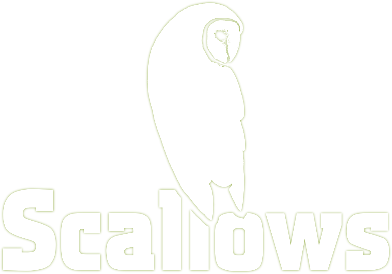 Scallow Caravan and Campsite